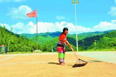 拉祜族寨子的幸福年——云南省勐海县曼囡村曼班三队的脱贫之路