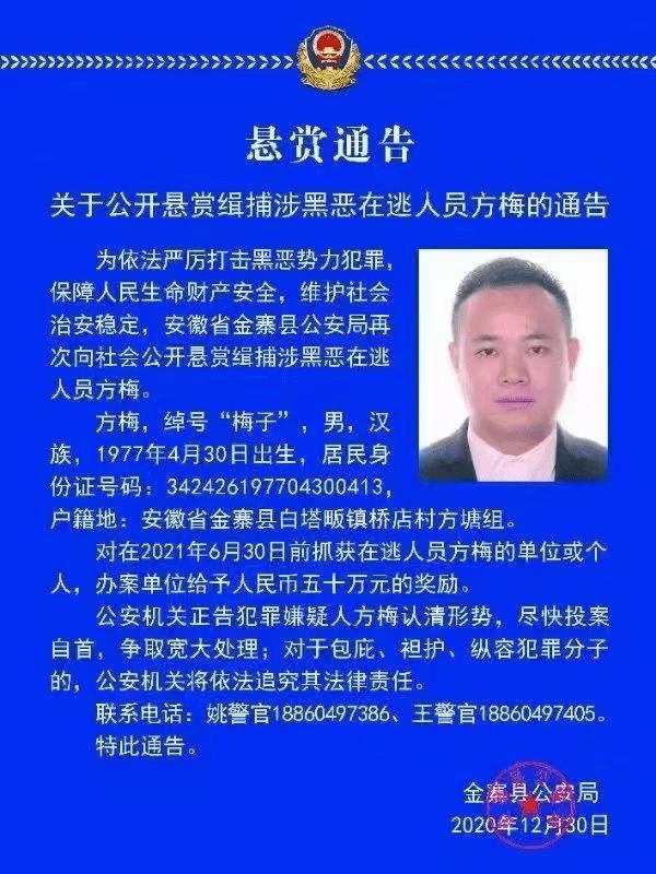 """悬赏50万!安徽警方缉捕""""梅子""""!"""