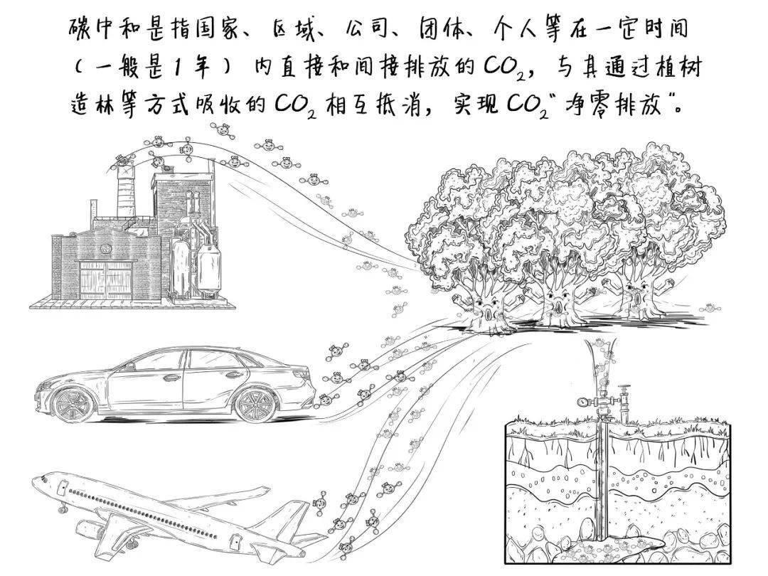『媛媛话环保』第561讲:啥是碳中和?  第3张