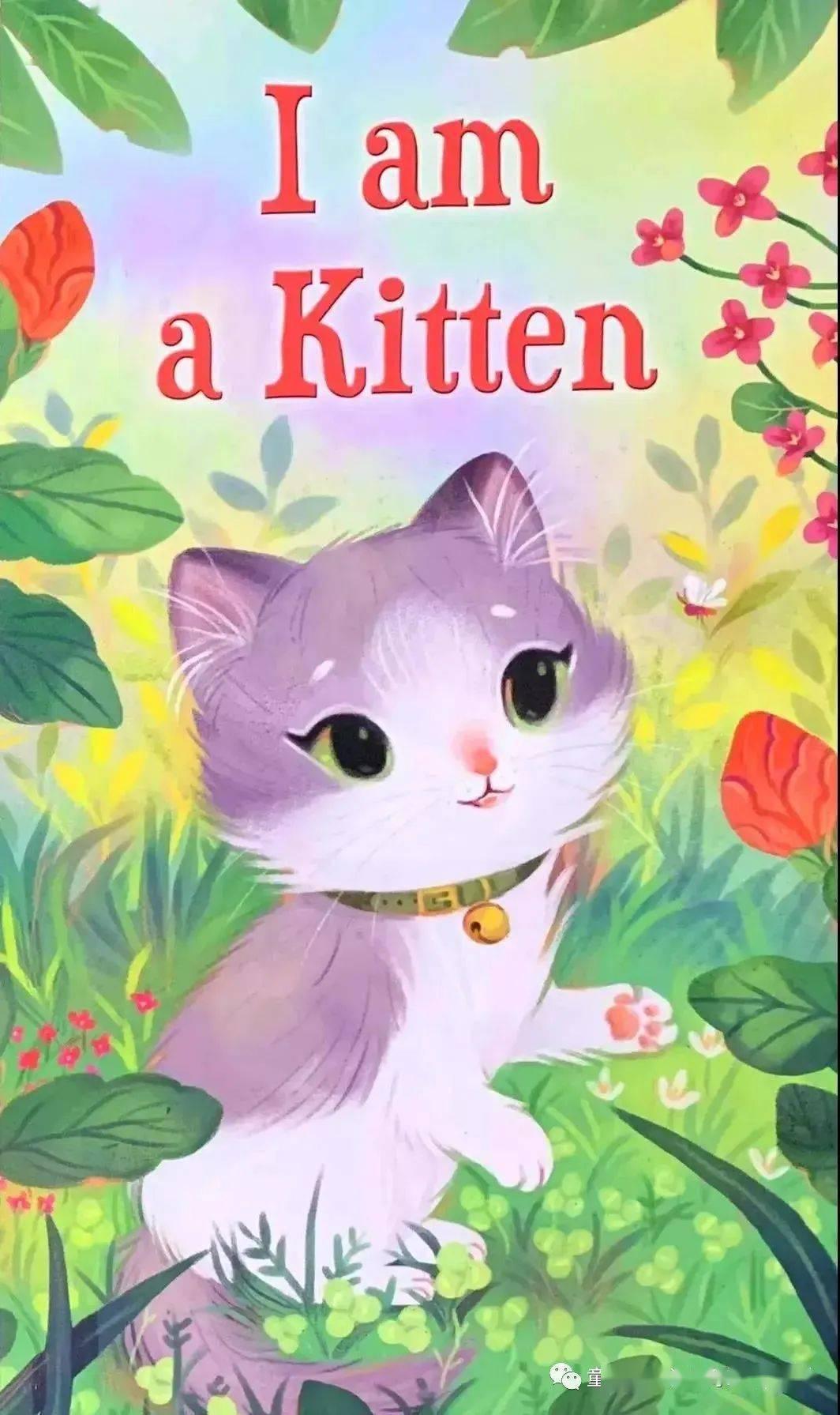 【经典英文绘本】《I am a Kitten》