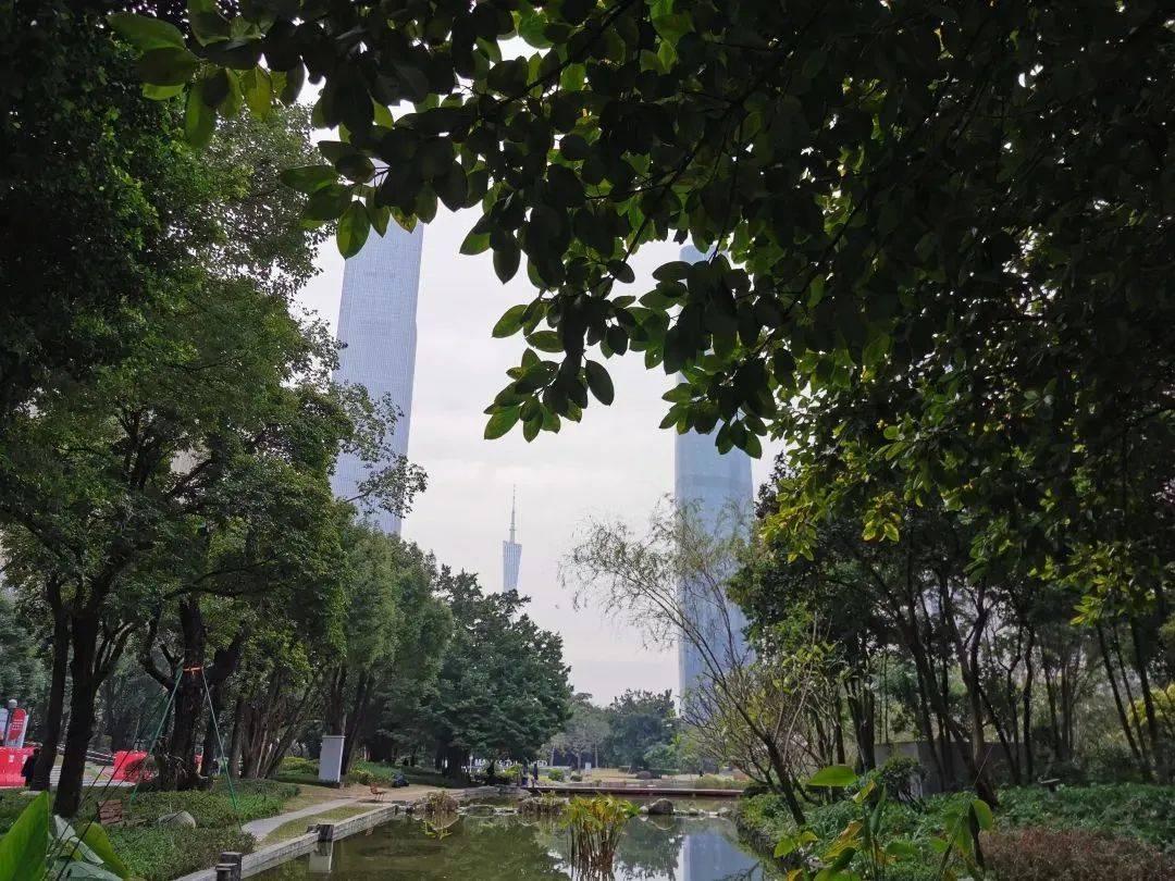 这样的话,要不要买珠江新城