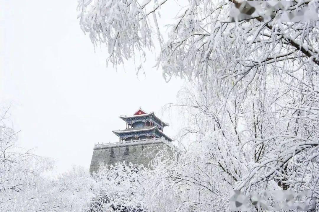 又到小寒 小寒料峭,雪过梅开