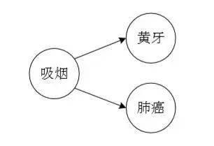 人工智能研究专题:因果推理和因果学习的研究进展