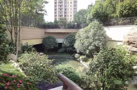 植物墙花盆 家庭园艺_杭州植物墙_室内植物墙 植物