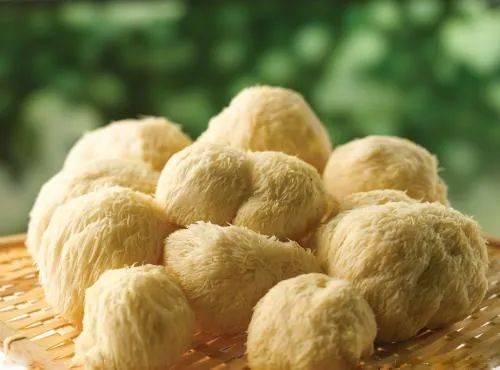 天然养胃王!用猴头菇做成的酥饼,香酥浓脆,养胃健脾,健康又好吃
