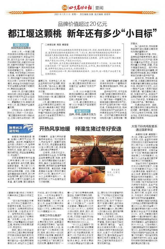"""都江堰这颗桃 新年还有多少""""小目标"""""""
