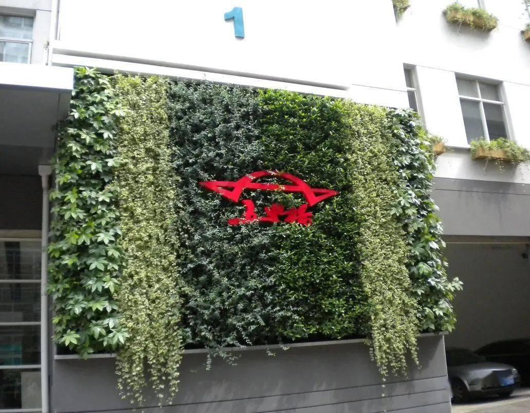 仿真绿植物墙_仿真绿植墙价格_植物墙植物