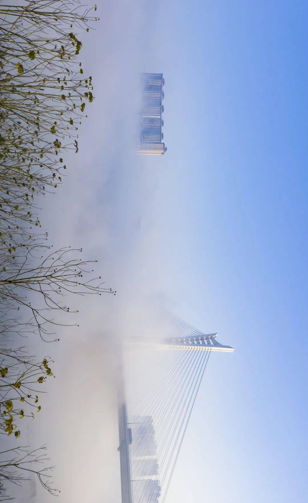 开窗,见雾里江阳!