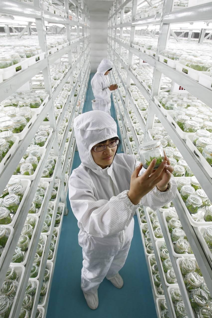 推进畜禽种业科技自主创新,四川已经做好了哪些准备?