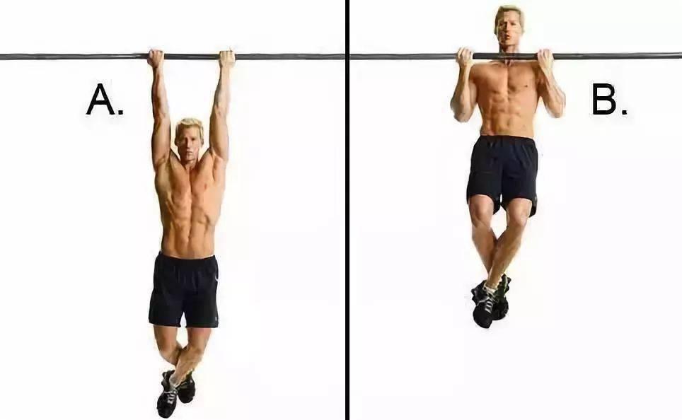 全身各部位肌肉最佳训练动作!