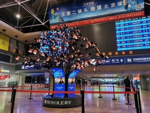 """柔宇科技柔树""""种""""在北京西站 为旅人种下一颗思念团圆的种子"""