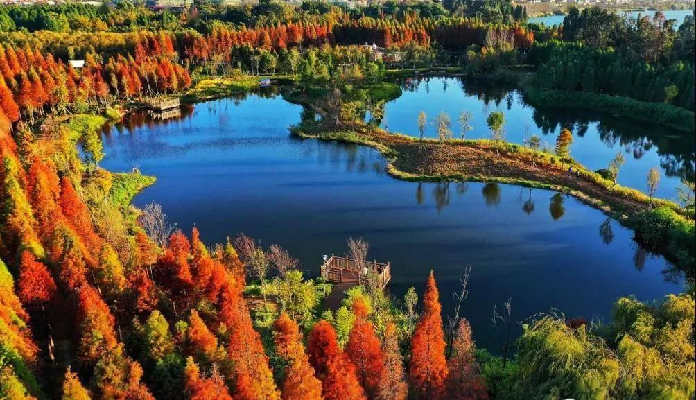 临滇池、靠湿地,昆明惊现趋于完美的东方院落