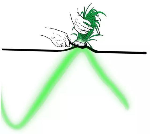 涨停是什么意思(股票涨停是怎么回事)插图(6)