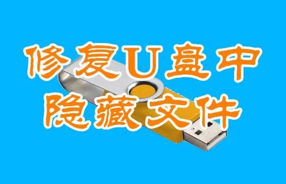 u盘文件被隐藏怎么恢复(u盘文件怎么解除隐藏)
