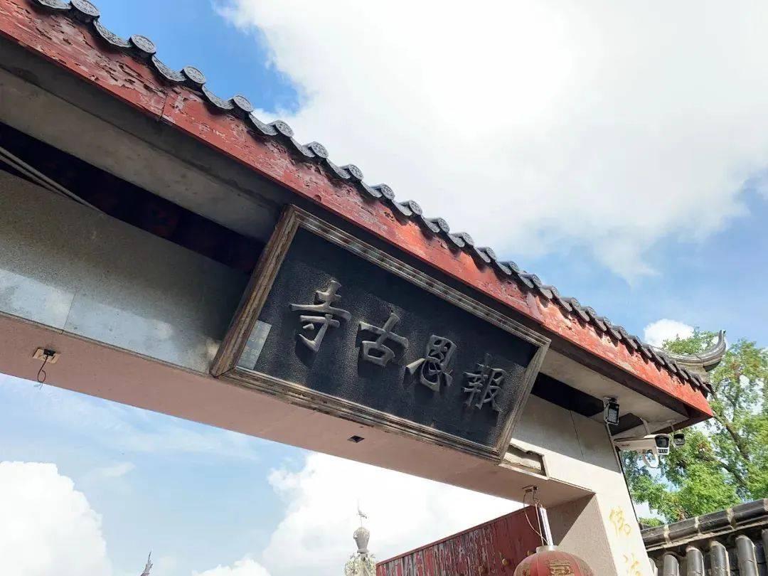上海的一座古寺里,没有香火味,只有流浪猫狗的味道