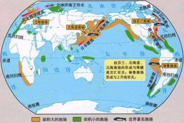 世界四大渔场是哪四个(中国四大渔场分布图)