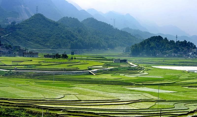 【这就是贵州 我为贵州代言】聚焦贵州生态环境保护