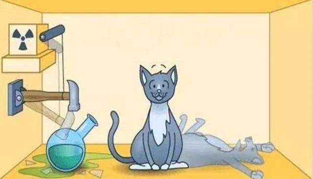 薛定谔的猫是什么意思?薛定谔是什么梗比喻什么