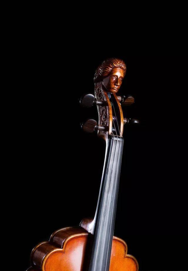 学小提琴烧钱吗(一把小提琴为什么这么贵)插图(3)