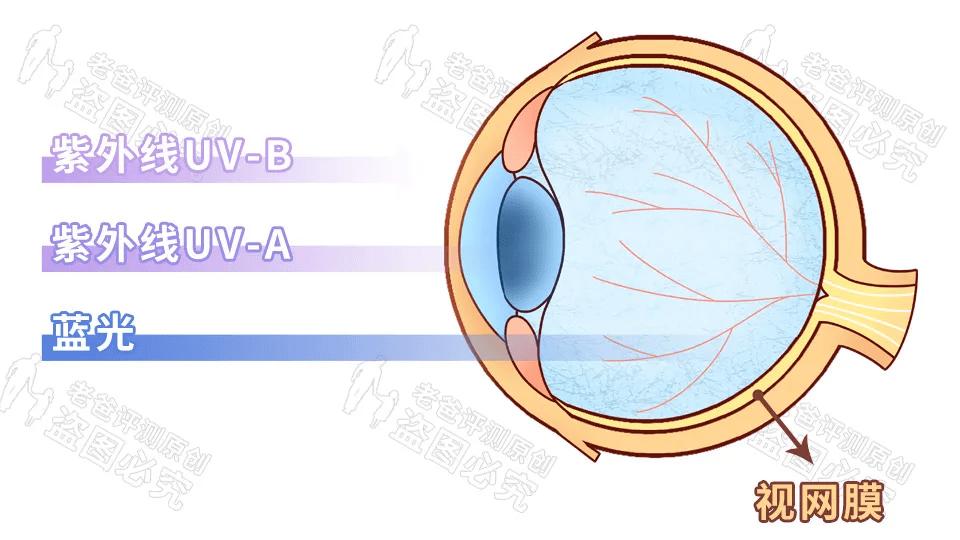防蓝光是不是都偏黄(防蓝光眼镜真的有用吗)插图(2)