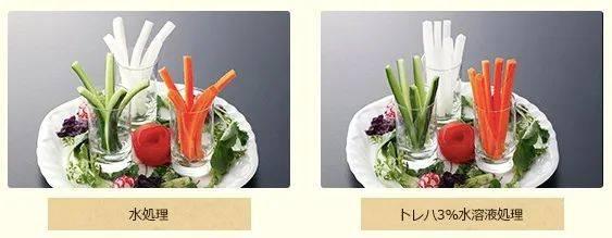 海藻糖是什么(海藻糖能吃吗)插图(8)