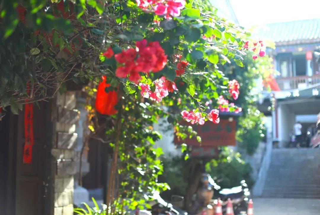 云南适合养老的一座小城,比大理丽江都安逸,离昆明仅一个多小时