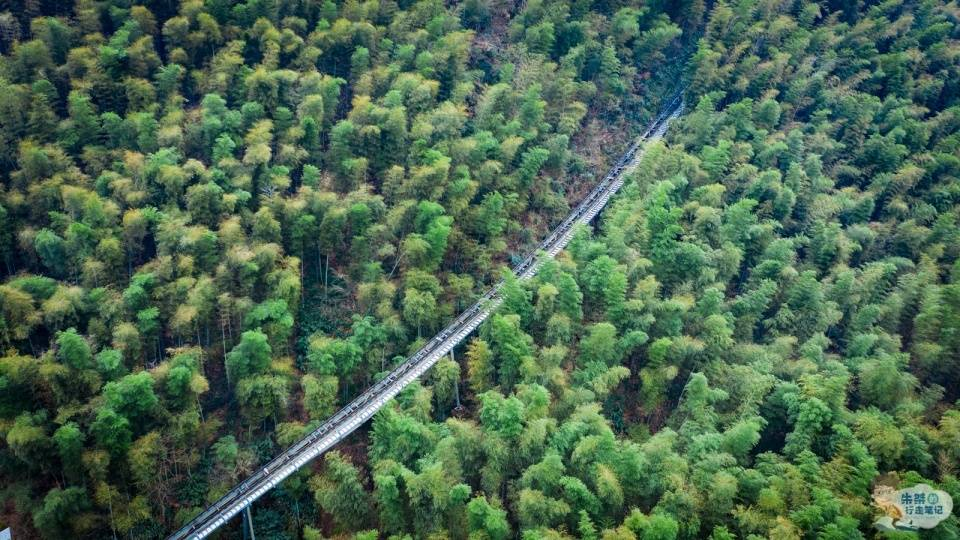 国内竹海景区中唯一的5A,坐拥近4万亩竹林,堪称中国最美竹海