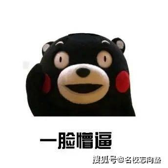 熊本 商科 大学