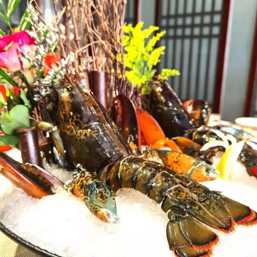 龙城港春节不打烊,比起海边还要实惠