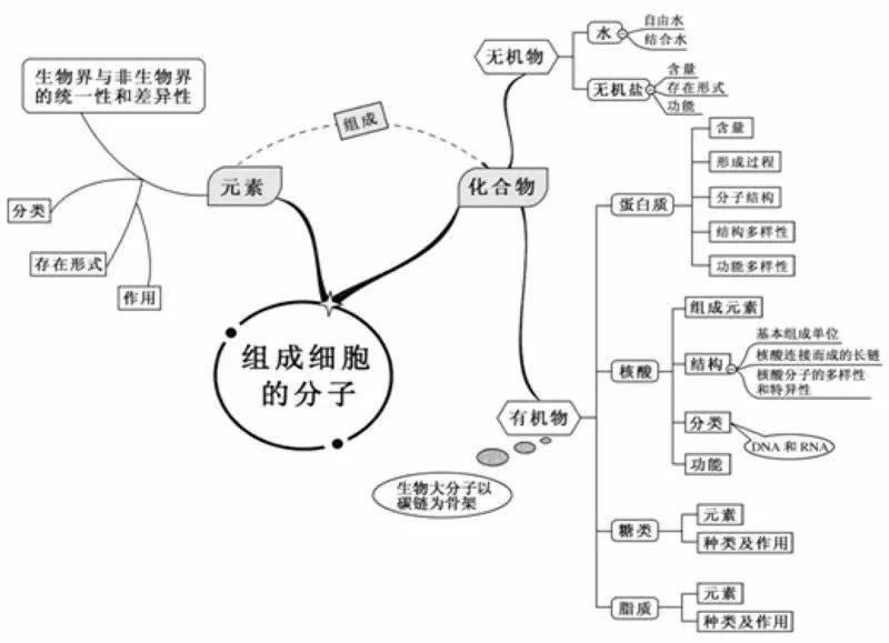 婷婷丁香五月中文字幕_亚洲中文字幕_亚洲自拍
