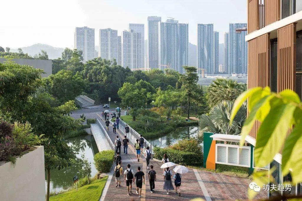 广东,正在疯狂建大学