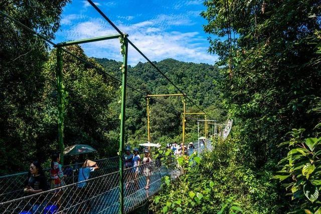 柳州有个超纯净的景区,流水潺潺是天然氧吧,快来此体验原始生活