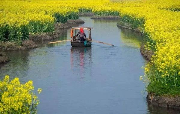 乡村旅游与各产业融合发展的几点思考