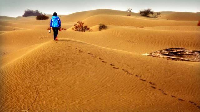 为何沙漠里的西瓜无人吃,了解原因以后,即使口渴也要躲得远远的