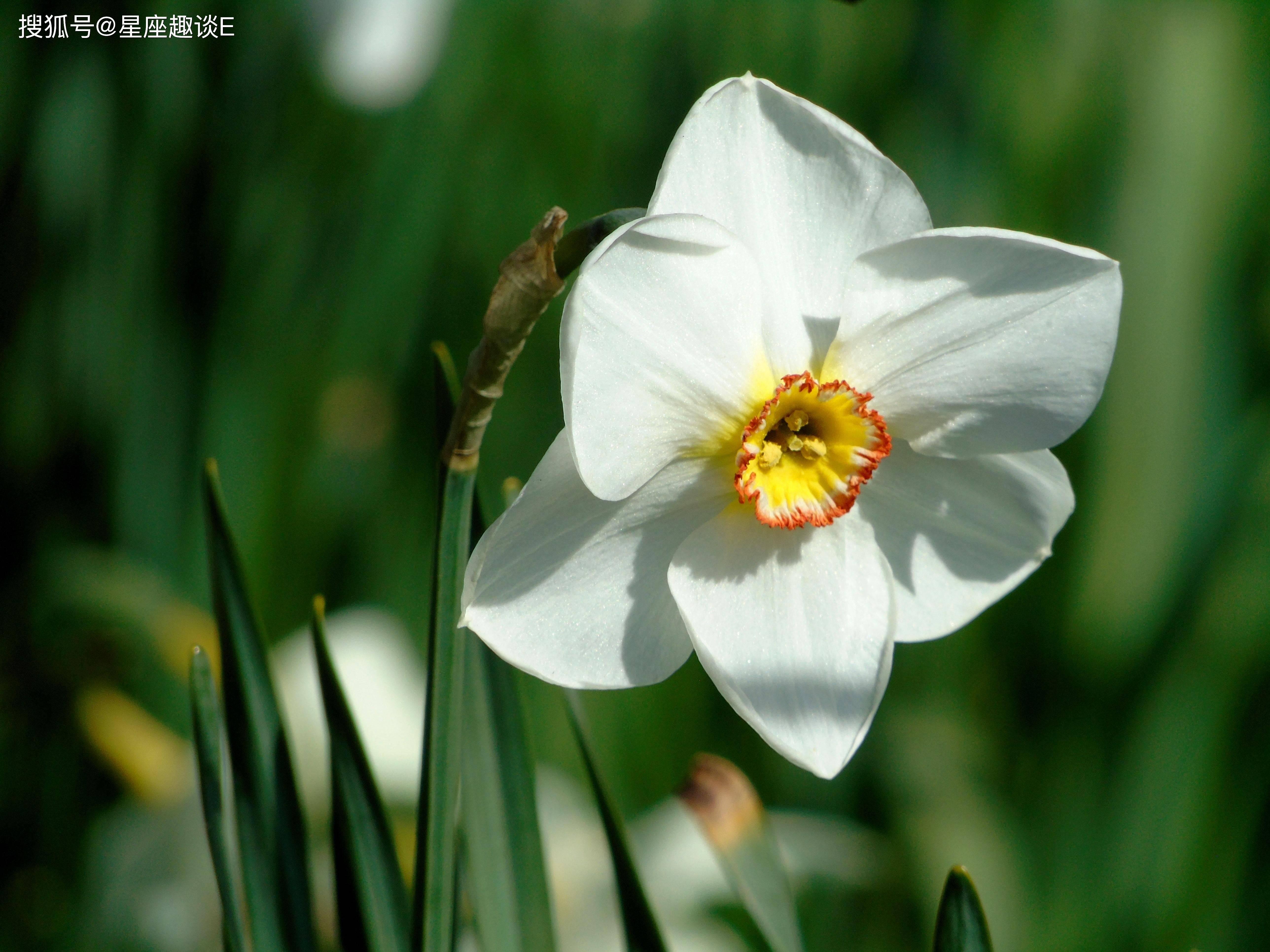 2月22日爱情运势:为爱倾心,恩爱有加的四大星座  第2张