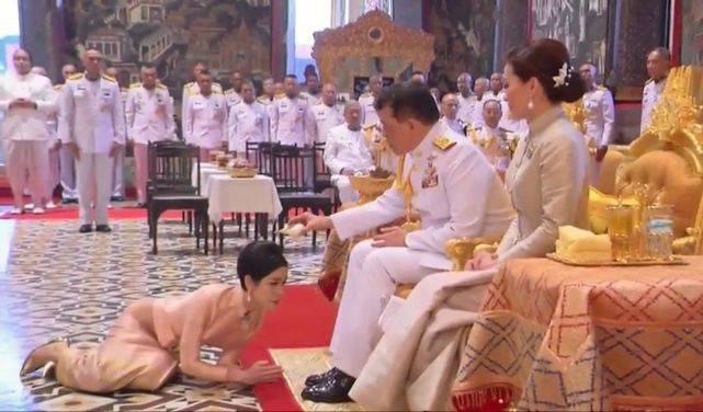 诗妮娜换成一身粉色终于惊艳!跪趴在苏提达脚边,王后眼神很小看