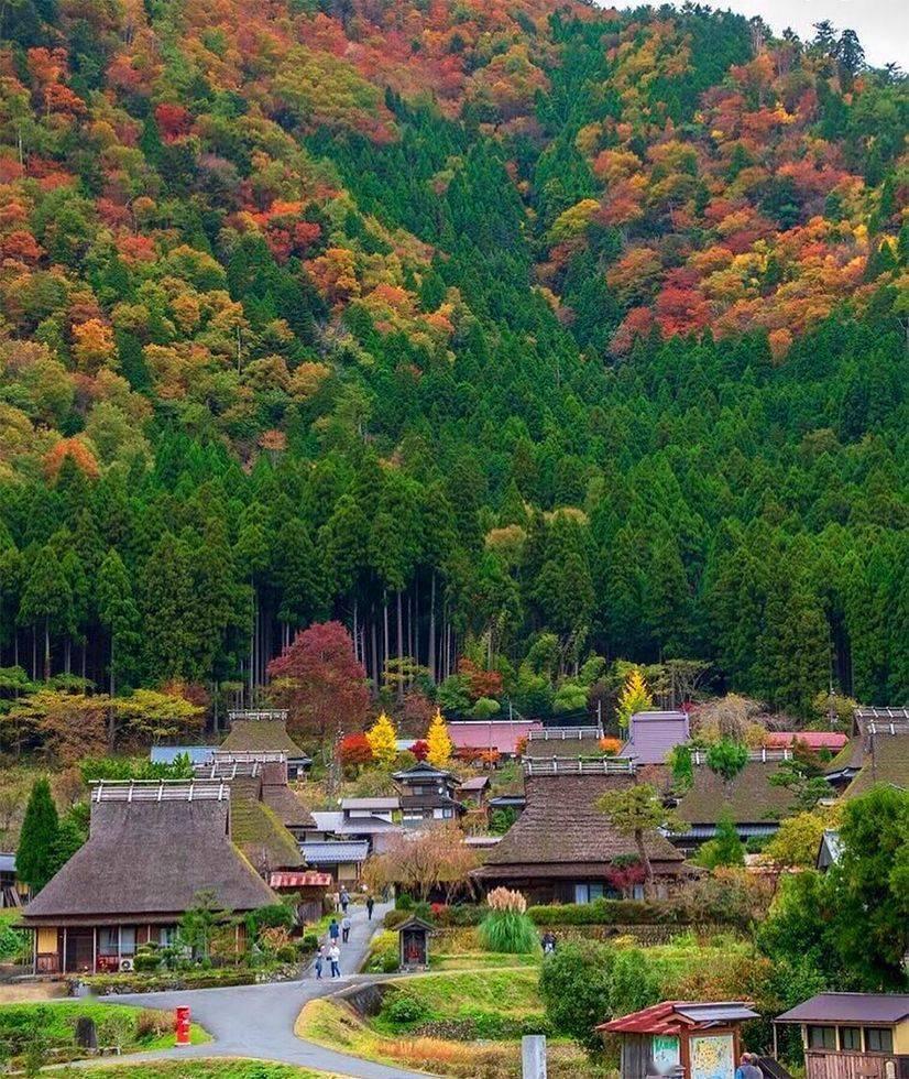 日本农村为什么美而不土?