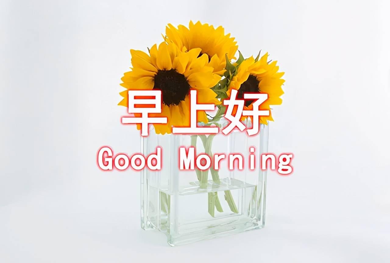 【必备】2020年每日一句早安问候语QQ46条