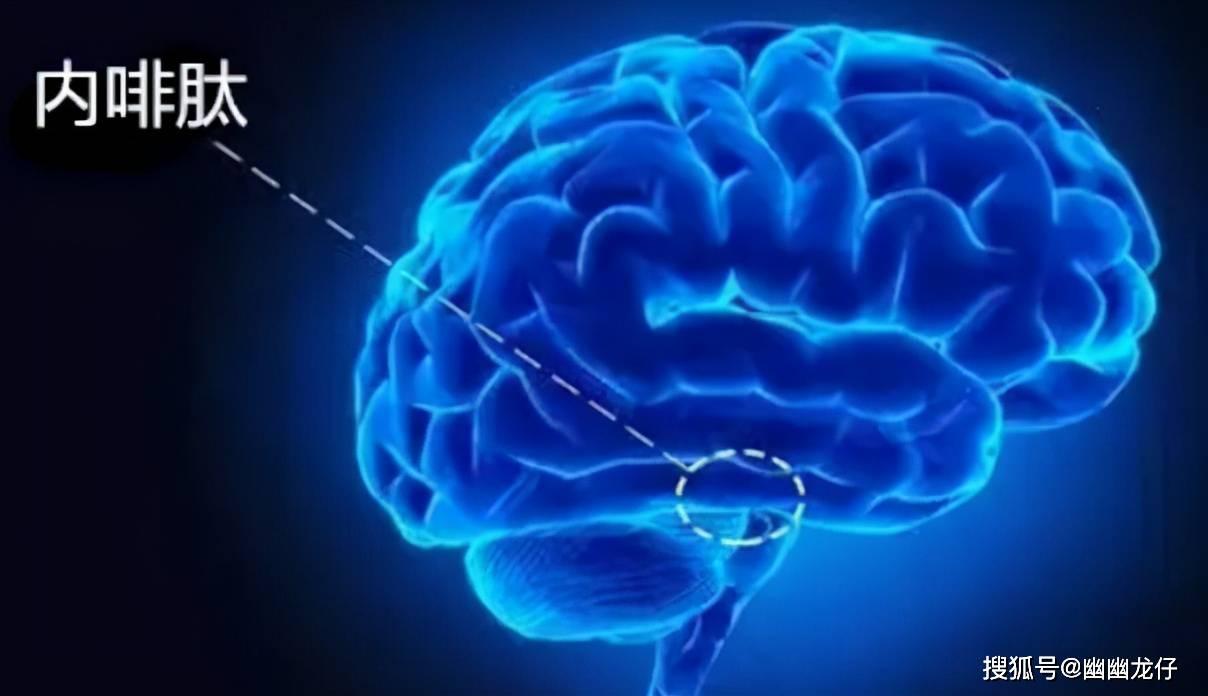 大脑高度紧张如何缓解 精神高度紧张怎么办