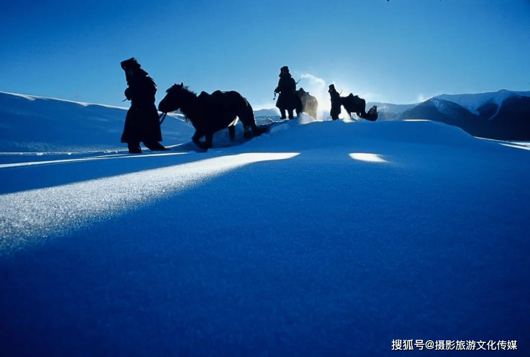 精彩影像|《蒙古马摄影艺术作品展》——《风情》