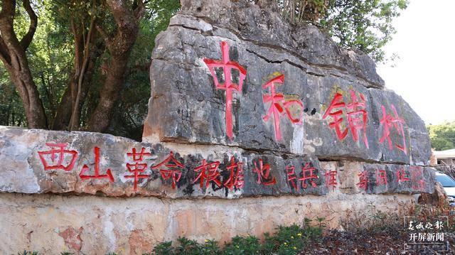 """深藏大山中的""""红树林""""——云南弥勒十六烈士纪念林"""