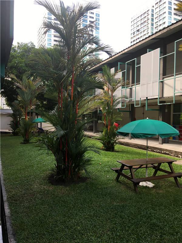 去新加坡科廷大学读研回国得到认可吗?