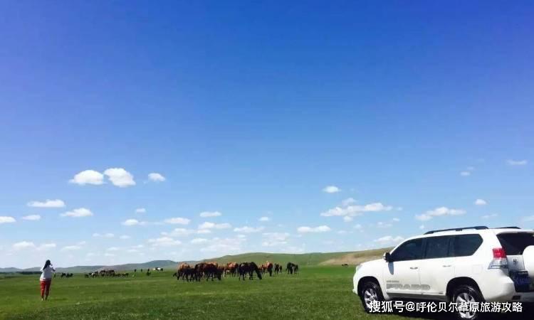 去呼伦贝尔大草原旅游包车好还是跟团好?