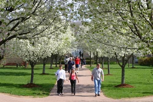 托福不同分数段的学生,在美国的校园生活是怎样的?