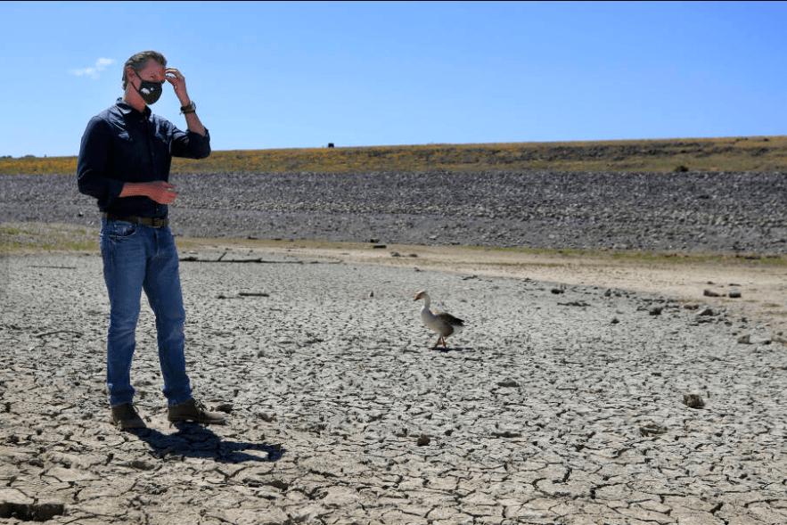 加州北部遭遇大旱, 酒农却说旱年出好酒