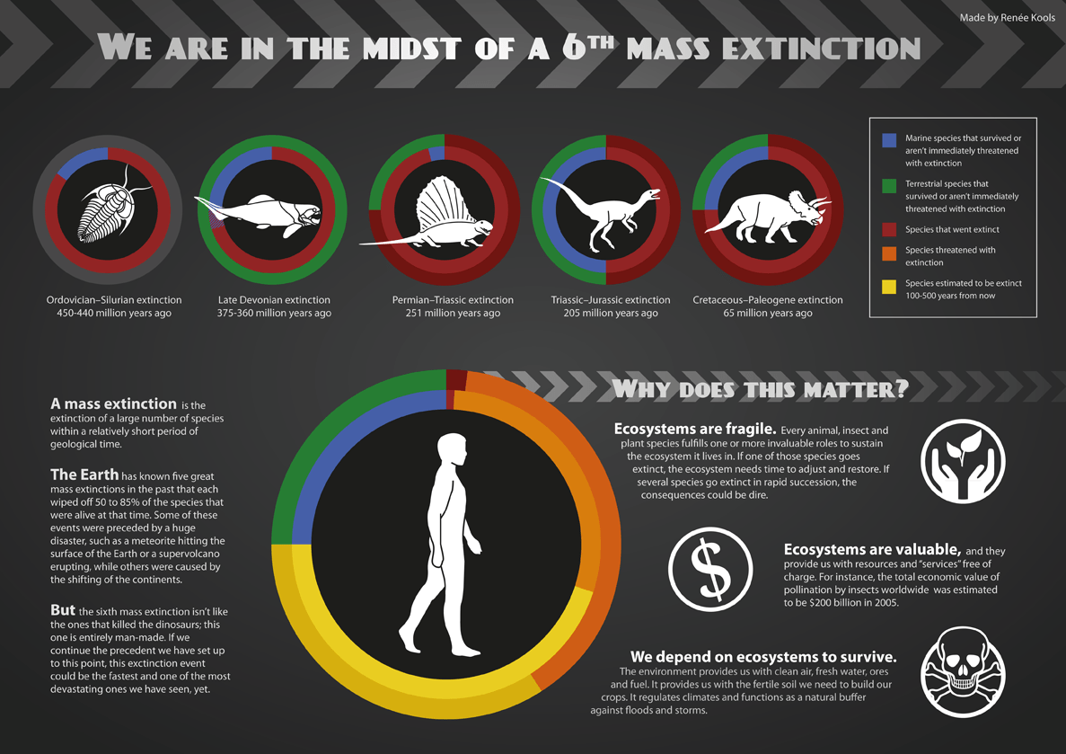 地球正进入第六次大灭绝时代?科学家:前所未有的危机或将到来  第18张