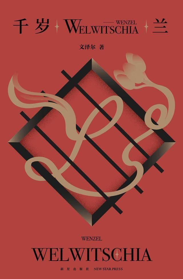 完本啦小说网推荐:6本悬疑氛围极强的小说,睡前翻开小说,给你一个迷幻的睡前氛围