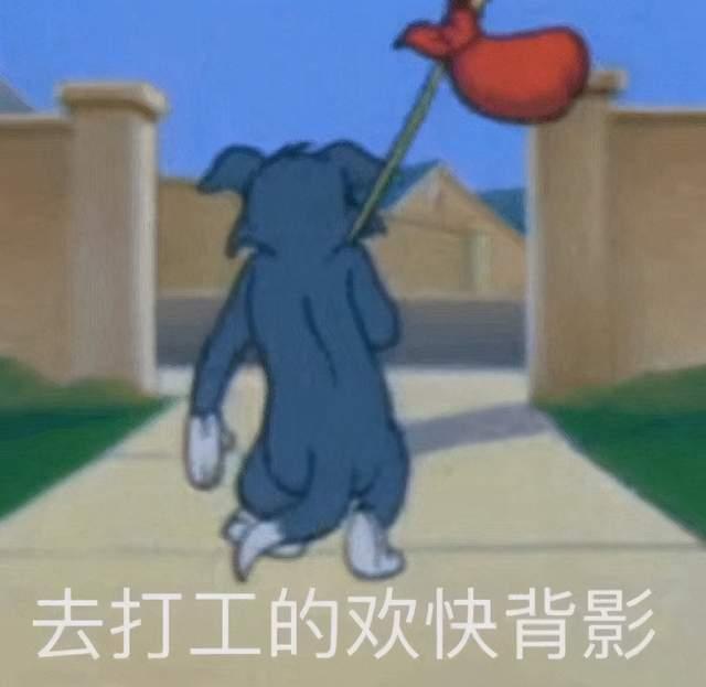 图片[3]-拉高综艺水准,董明珠太会当老板了,金句频出令人上头-妖次元