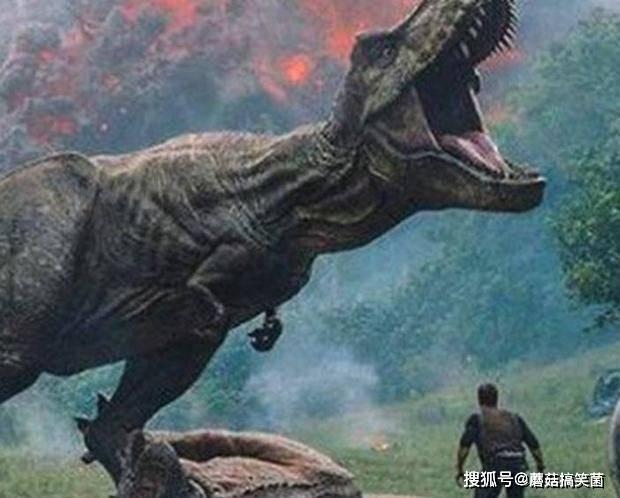同样是地球统治者,人类为什么比恐龙更早产生文明?或许早已注定