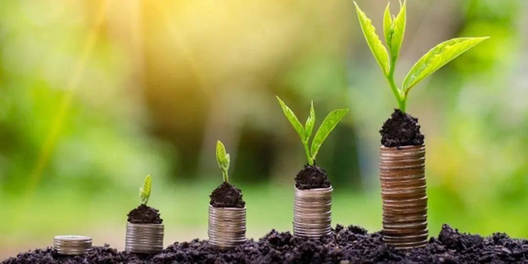 大额投资排行_大额存款利息哪家银行高2019大额存款收益排行
